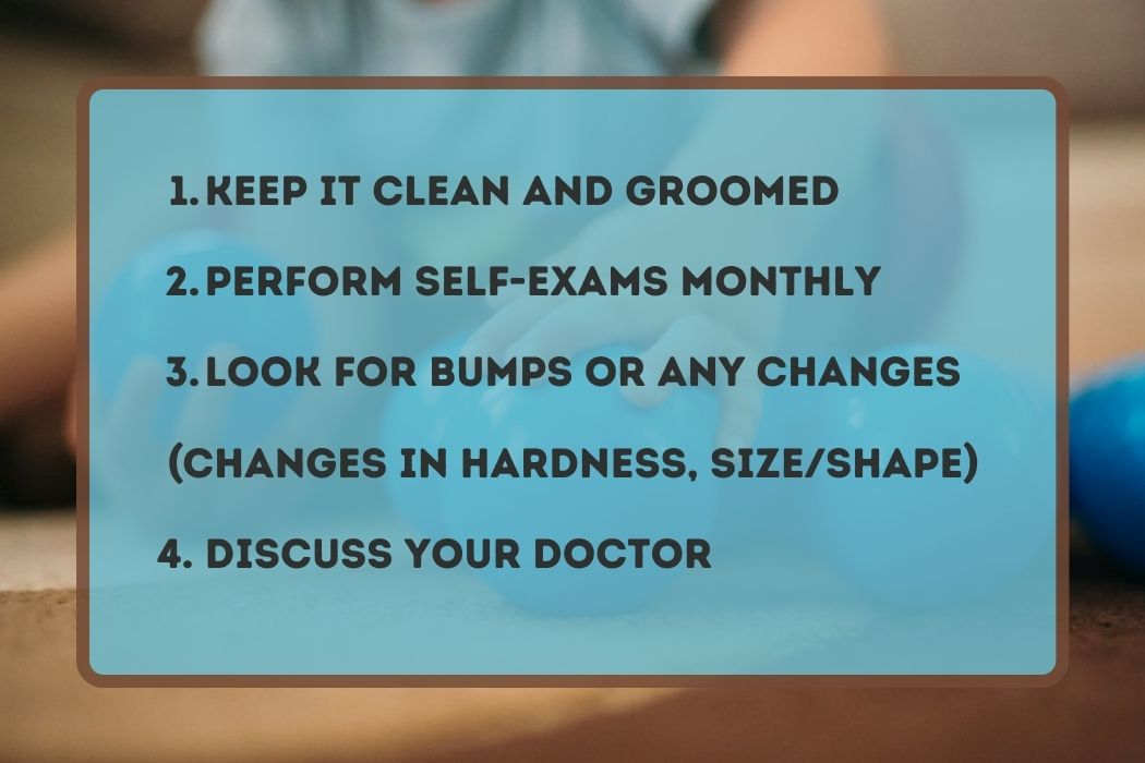 Testicle Care Tips